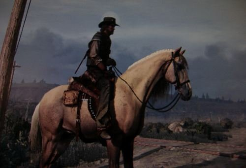 Cavalos Red Dead Redemption